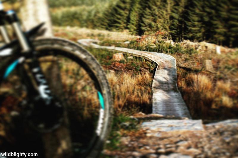 The boardwalk drop-in on the 'B-line' Black mountain bike trail at Coed Llandegla.
