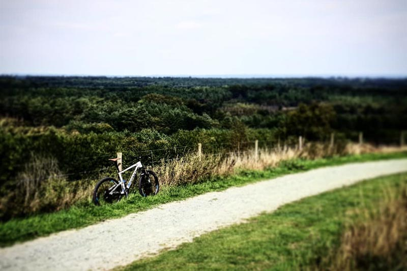 Mountain Biking on Old Pale Hill at Delamere Forest