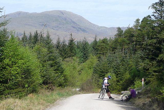 Grizedale Forest Mountain Biking