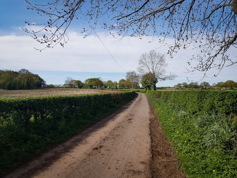 Tarmac farm track on the Delamere Way